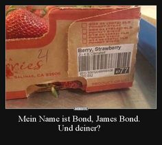 Mein Name ist Bond, James Bond. Und deiner? | Lustige Bilder, Sprüche, Witze, echt lustig