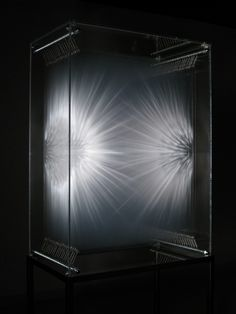 David Spriggs | Emergence of Perception