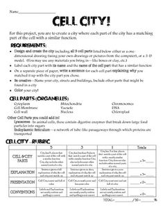 Worksheets Cell Analogy Worksheet cell city worksheet functions due biology student and colonial on pinterest worksheet