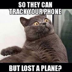 "Not only can they track your phone but they can track you down through face recognition software by satellite observation… This is just one of the hundreds of amazing things ""they"" can do… You really think they lost a plane…? Maybe? I'm truly looking forward to see what ""they"" blame this on… Terrorists or aliens? LOL"