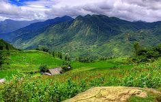 Sapa trekking tours are great adventure tours in Vietnam. Sapa trekking tours offer travelers wonderful trekking itineraries, exploring the best of Sapa. Sapa trekking tours also provide travelers many choices of trekking tours in Sapa in Vietnam.