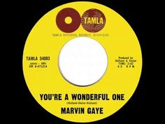You're a Wonderful One (marvin gaye)