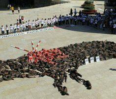No a la corrida de toros. Look closely at the picture.