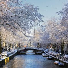 ** You can't get too much winter in the winter by B℮n