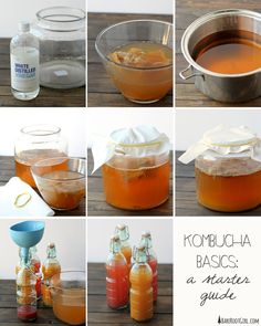 Quart size Kombucha for beginners. Brew your own kombucha. How to make kombucha. How To Brew Kombucha, Kombucha Tea, Kombucha Brewing, Making Kombucha, Kombucha Starter, Kombucha Probiotic, Kombucha Mother, Make Your Own Kombucha, Homebrewing