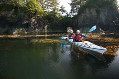 5-Day Sea Otter Kayak Tour (Base Camp) Kayak Touring