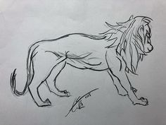 Lion, Sketch, Drawings, Art, Leo, Sketch Drawing, Sketches, Art Background, Kunst