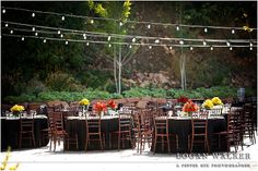 Black, white , red and yellow wedding colors. Red and yellow floral centerpieces. Retro 1950s inspired wedding.