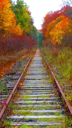 ~~Back on Track • an abandoned railway leads to autumn, Toronto, Canada • by Kevin Haggith~~