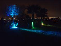 Ambientación con luces en Jardín de Fiestas Calypso Gardens!