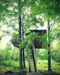 Visit the lakeside tree house built by Roderick Romero Studios.