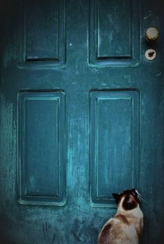 Looks just like my own cat!  He's usually on the other side wishing he could go out though! And my door is not this beautiful old blue :)