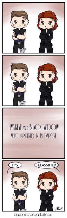 Hawkeye and Black Widow: What Happened In Budapest by caycowa