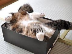 Sleepy Hollow  Photo via Pinterest