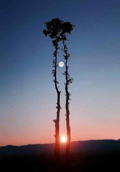 """""""Tudo na vida depende do modo como você olha. Todas as situações têm vários lados. São suas crenças que vão determinar c..."""