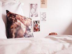 Terveissii kotoota - Coco Sweet Dreams | Lily