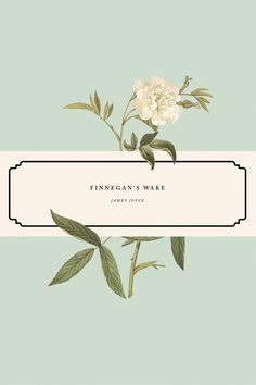 wonderbookcovers:  Finnegan's Wake by James Joyce