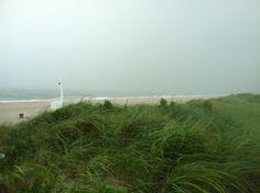 Rainy day Westhampton beach, NY