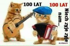 Rock N, Happy Birthday, Animals, Happy Brithday, Animales, Animaux, Urari La Multi Ani, Happy Birthday Funny, Animal