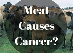 Understanding IARC's classification about processed and red meats.
