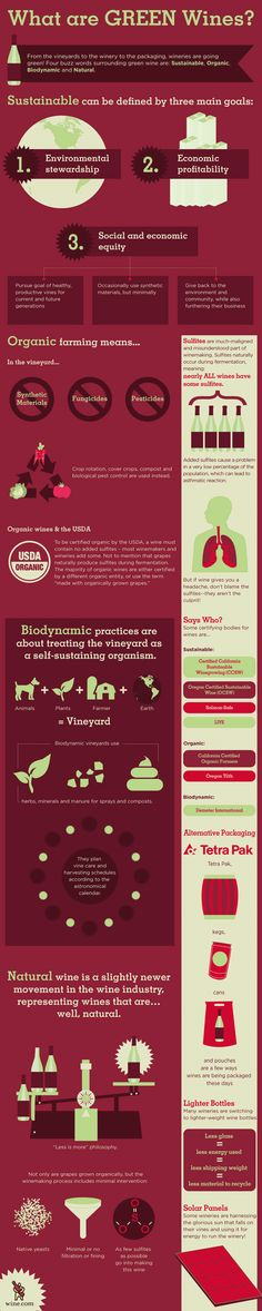WHAT ARE GREEN WINES * Organic Farming *Biodynamic * Bootles *** MORE FOOD #infographics » http://pin.st/infographics-food