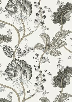 KALAMKARI VINE, Black and White, AT78739, Collection Palampore from Anna French