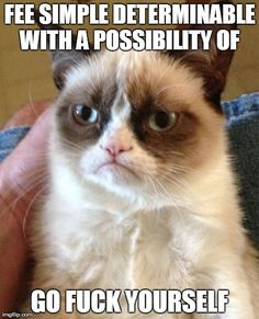 Grumpy Cat Meme | FEE SIMPLE DETERMINABLE WITH A POSSIBILITY OF  GO F**K YOURSELF | image tagged in memes,grumpy cat | made w/ Imgflip meme maker