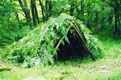 Shelter may be simple or complex, cheap or crazy expensive. The commonality? Shelter provides protection from the elements. Shelter provides comfort.