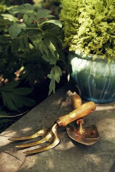 Chicly worn gardening tools are both functional and handsome next to a budget-friendly dégradé pot from The Home Depot.