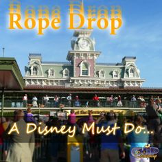 What are some of your Disney Must Do?