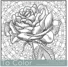 Printable Rose Coloring Page for Adults PDF JPG Instant by ToColor