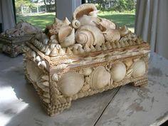 Large seashell Pine Box