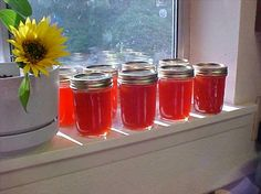 Hot as Hell Habanero Zucchini Jelly    You can substitute Strawberry Jello for the Certo.  REALLY hot and tasty!