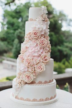 Cakes&Confectionery| Patricia's Cake Creations