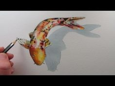 How to Draw a Fish: Koi Carp narrated step by step Watercolor Fish, Watercolor Video, Watercolour Tutorials, Watercolor Techniques, Watercolor Paintings, Painting Techniques, Koi Fish Drawing, Fish Drawings, Koi Art
