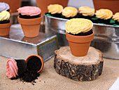 Gerorgetown cupcakes
