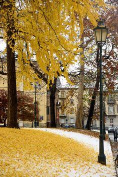Lantern Post, Turin Italy, Autumn Scenes, Seasons Of The Year, Shades Of Yellow, Future Travel, Green Trees, Season Colors, Summer Colors