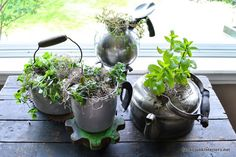 Start an indoor or outdoor garden by planting herbs in a used tea kettles—we love the vintage look of these tarnished silver ones.