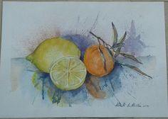 Agrumi - acquerello