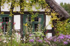Quaint cottage garden – Famous Last Words Cottage In The Woods, Cozy Cottage, Cottage Style, Cottages Anglais, Orange Pastel, Garden Cottage, Garden Bed, Shade Garden, Garden Plants
