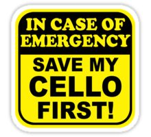 "I need this to say ""In case of an emergency; Save my VIOLIN first!"""