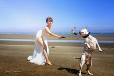 wedding dress made of tulle and lace and.dogie with a boomerang :) Irish Beach, Communion Dresses, Everyday Dresses, First Communion, Occasion Dresses, Dressmaking, I Dress, Christening, Evening Dresses