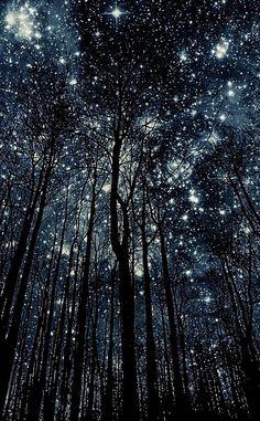 stars.....