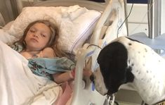 This Dog Did The Unthinkable For A Little Girl. Now Watch What They Do For The Dog. George, a Great Dane service dog, helped a little girl named Bella walk again. The 11-year-old girl suffers from Morquio Syndrome and thought she'd spent her life on crutches or in a wheelchair. But all of that changed when she met George. Now it's time to celebrate George and the amazing work he's done as a service dog and friend. :)