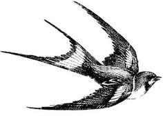 Swallow bird rubber stamp WM 225x15 by...
