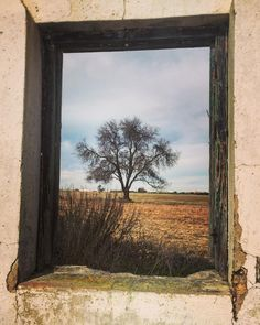 by molinanino via Instagram #andalucia #Spain #window #tree
