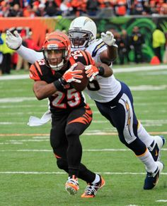 Chargers vs. Bengals 01/05/14
