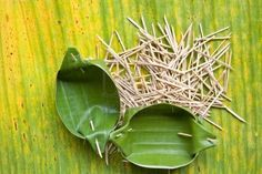 Food Containers That Are Made From Banana Leaf Wood Skewer Sharp Stock Photo, Picture And Royalty Free Image. Banana Leaf Plates, Banana Leaf Thai, Banana Leaves, Food Packaging, Packaging Design, Packaging Ideas, Boodle Fight, Leaf Crafts, Diy Crafts