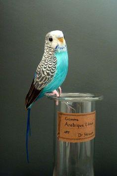 Blue Budgie Artificial Bird Decoration