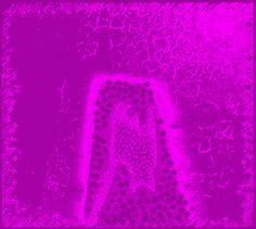 cat neon